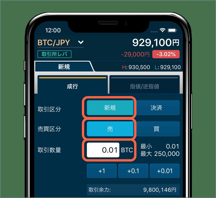 ビットコイン 入力画面